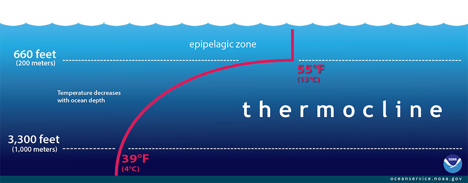 /sites/default/files/20181003_thermocline.jpg