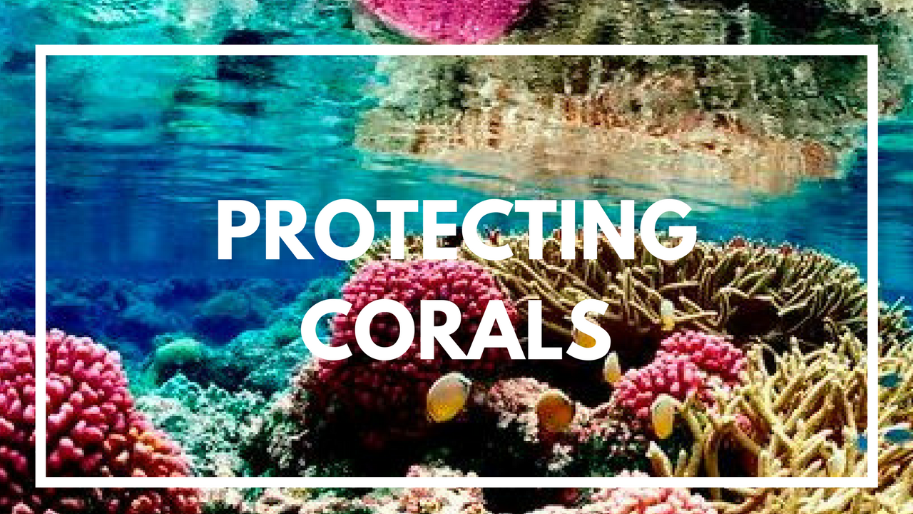Protecting Corals