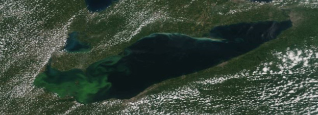 S-NPP true-color image of Lake Erie algal bloom on August 16, 2015.